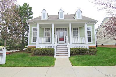 Novi Single Family Home For Sale: 42543 Whitman Way
