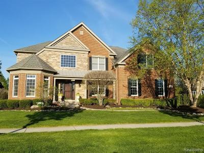 Novi Single Family Home For Sale: 50385 Drakes Bay Dr
