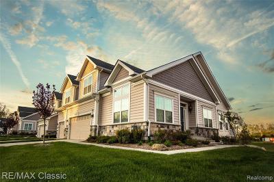 Ann Arbor Condo/Townhouse For Sale: 2659 Oxford Cir