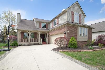 Ann Arbor Single Family Home For Sale: 5849 Villa France Ave