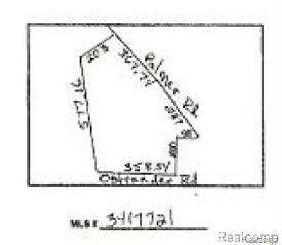 Residential Lots & Land For Sale: Ostrander