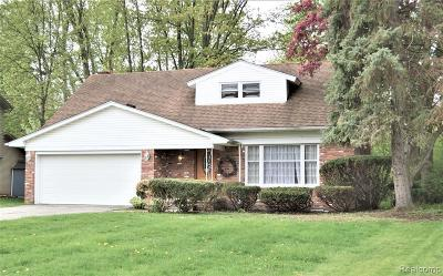 Southfield Single Family Home For Sale: 19841 Silver Spring St