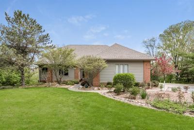 Ann Arbor Single Family Home For Sale: 5220 Pheasant Ct