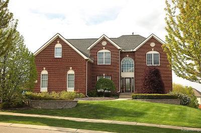 Novi Single Family Home For Sale: 50564 Langley Dr