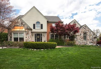 Northville Single Family Home For Sale: 17302 Cameron Dr