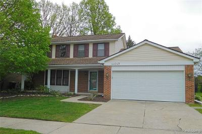 Canton Single Family Home For Sale: 44049 Cranberry Dr