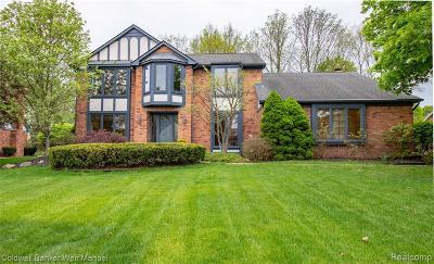 Northville Single Family Home For Sale: 37677 W Meadowhill