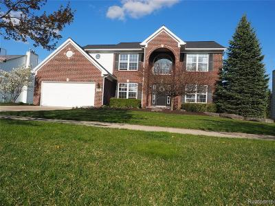 Chelsea Single Family Home For Sale: 1342 Carston Ln