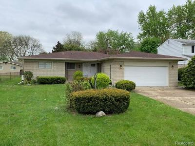Southfield Single Family Home For Sale: 18230 Onyx St