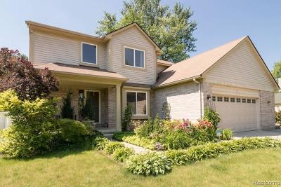 Livonia Single Family Home For Sale: 28605 Clarita St
