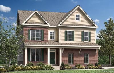 Ann Arbor Single Family Home For Sale: 6407 Avalon Way