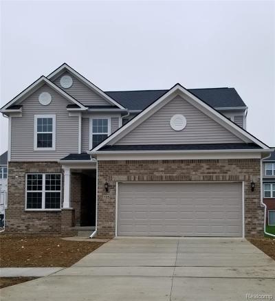 Ann Arbor Single Family Home For Sale: 744 Groveland Cir