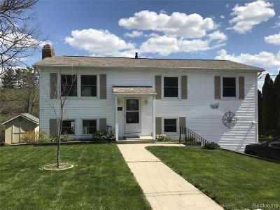 Lake Orion Single Family Home For Sale: 300 Hill St