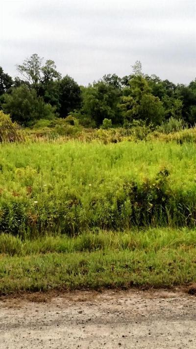 Chelsea MI Residential Lots & Land For Sale: $89,000