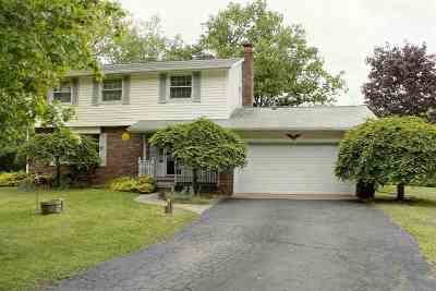 Lenawee County Single Family Home For Sale: 4418 Wickham Ct