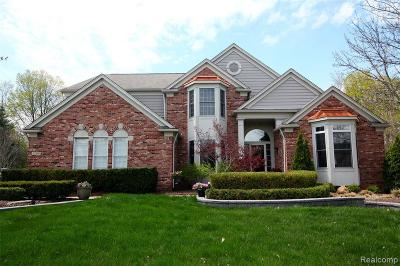 Northville Single Family Home For Sale: 17359 Oak Hill Court
