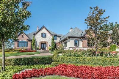 Northville Single Family Home For Sale: 19019 Bella Vista Crt