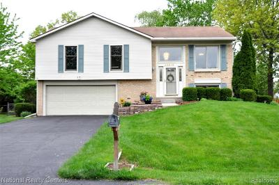 Novi Single Family Home For Sale: 40510 Heatherbrook Ln