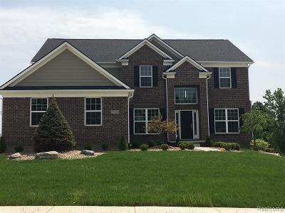 Canton Single Family Home For Sale: 8735 Elmont Cir