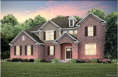 Canton Single Family Home For Sale: 8534 Elmont Cir