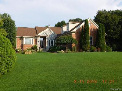 South Lyon Single Family Home For Sale: 11455 Hammerstone Dr