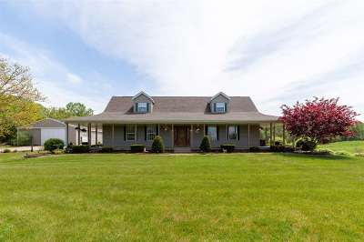 Onsted MI Single Family Home For Sale: $424,900