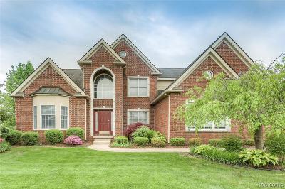 Novi Single Family Home For Sale: 26481 Crestwood Dr