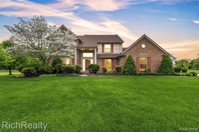 Canton Single Family Home For Sale: 6407 Harrow Crt