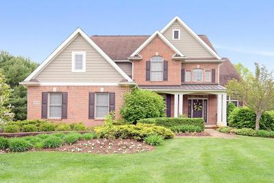 Washtenaw County Single Family Home For Sale: 6405 Brookview Dr