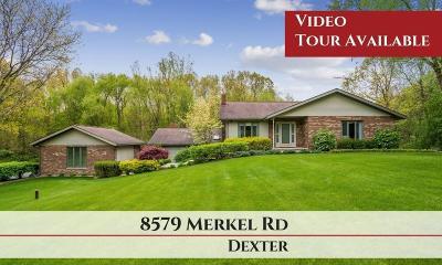 Dexter Single Family Home For Sale: 8579 Merkel Rd