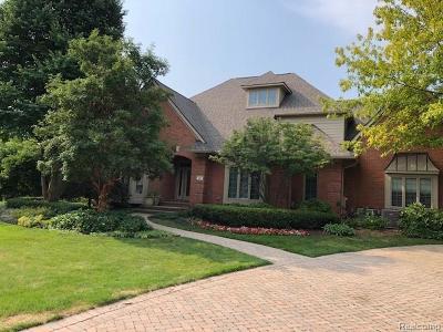Northville Single Family Home For Sale: 18871 Oak Leaf Ln