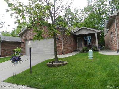 South Lyon Condo/Townhouse For Sale: 548 Willow Dr