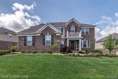 Farmington Hill Single Family Home For Sale: 22240 Lujon Dr
