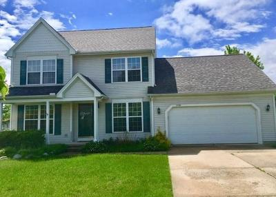 Dexter Single Family Home For Sale: 7239 Ulrich