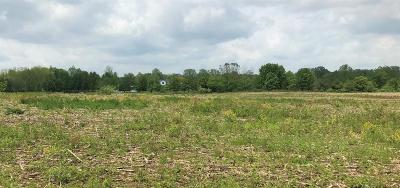 Tecumseh MI Residential Lots & Land For Sale: $120,000