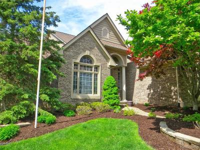 Novi Single Family Home For Sale: 45692 Bristol Cir