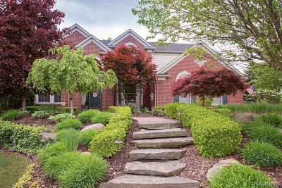 Northville Single Family Home For Sale: 17500 Oak Hill Dr