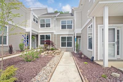 Chelsea Condo/Townhouse For Sale: 607 Pebblestone Ln