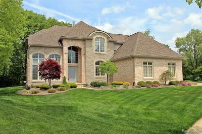 South Lyon Single Family Home For Sale: 61160 Palomino Crt