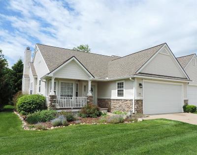 Washtenaw County Condo/Townhouse For Sale: 3495 Huron View Ct