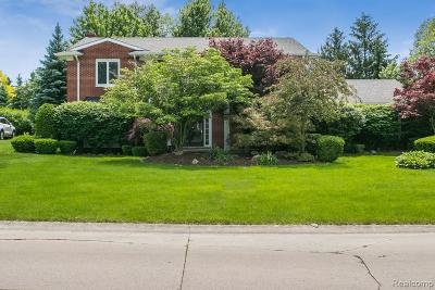 West Bloomfield Single Family Home For Sale: 3137 Winchester Rd