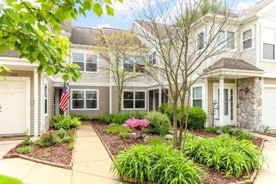 Chelsea Condo/Townhouse For Sale: 752 W Fieldstone Cir