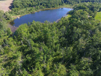 Concord MI Residential Lots & Land For Sale: $150,000