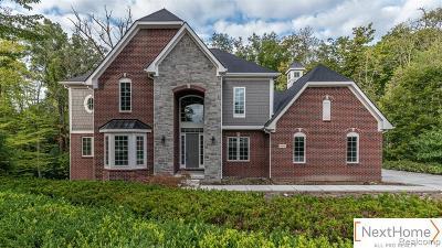 Canton Single Family Home For Sale: 8098 Tilbury Crt