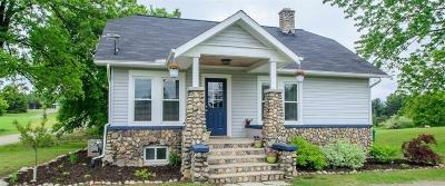Chelsea Single Family Home For Sale: 7035 Lingane Rd