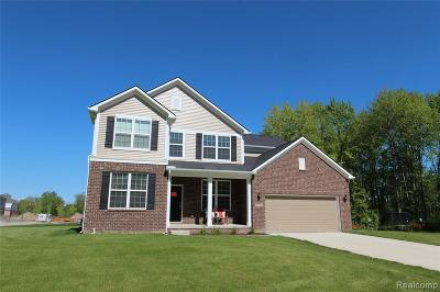 Novi Single Family Home For Sale: 25712 Oberlin Crt