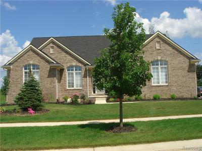 Canton Single Family Home For Sale: 47575 Ellery Ln