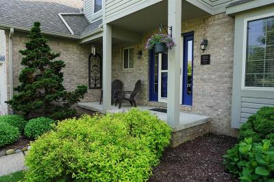 Chelsea Single Family Home For Sale: 1423 Carston Ln