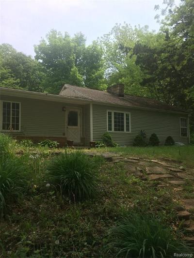 Northville Single Family Home For Sale: 8660 Napier Rd