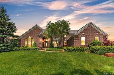 Ann Arbor Single Family Home For Sale: 2910 Tessmer Rd